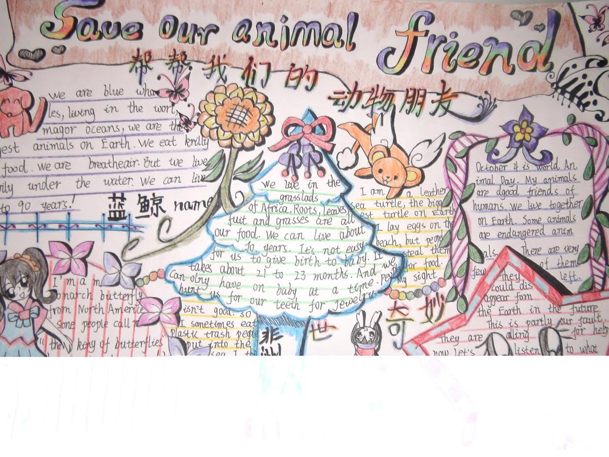 帮帮我们的动物朋友英语手抄报